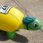 Cyclist theme turtle