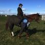 Horse Tweed Suit William Hill