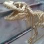 Dinosaur prop 4.jpg