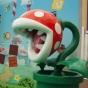 Mario Piranha.jpg