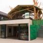 Treehouse Southampton.jpg