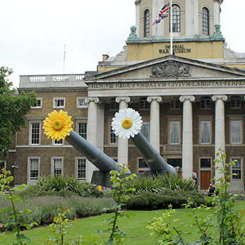 Giant Peace Flowers Imperial War Museum