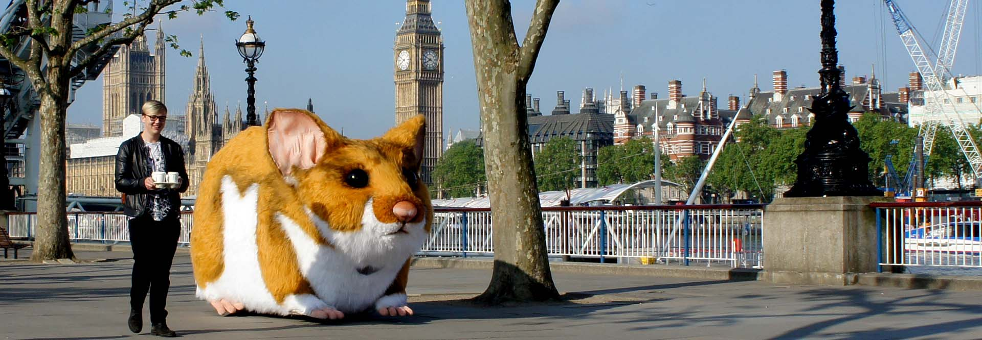 Kwick Fit Jaffa Hamster
