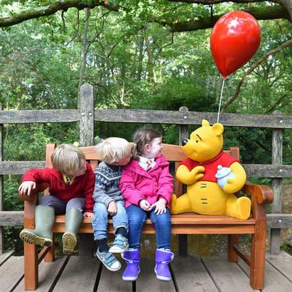 Winnie Pooh 100 Acre Wood