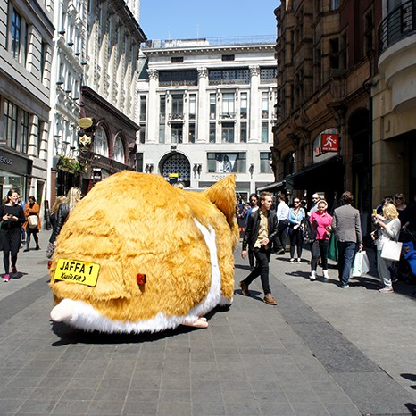 Giant Hamster Kwik Fit
