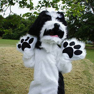Fluffy dog costume